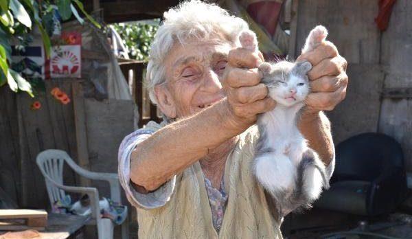 """""""Kedilerim Her şeyim"""""""