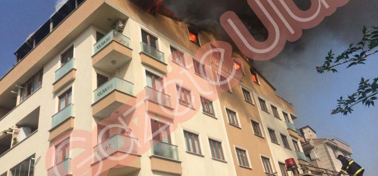 Son Dakika: Gebze'de Yangın