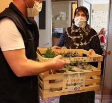Büyükşehir'den yaşlılara şifa niyetine proje